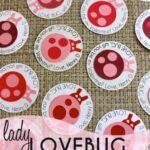 Lady Lovebug Valentines
