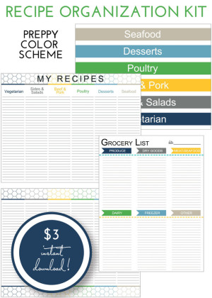 Recipe Organization Kit - Preppy