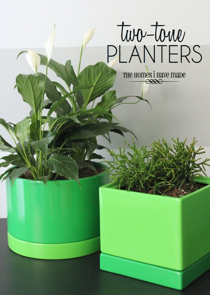 Two-Tone Green Planters