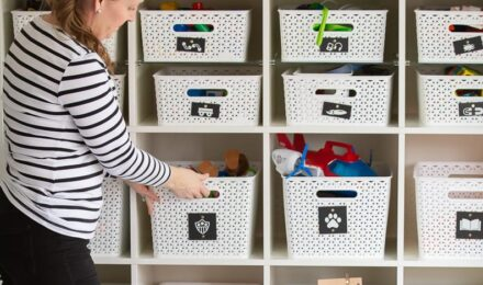 Organization Projects & Ideas | The Homes I Have Made