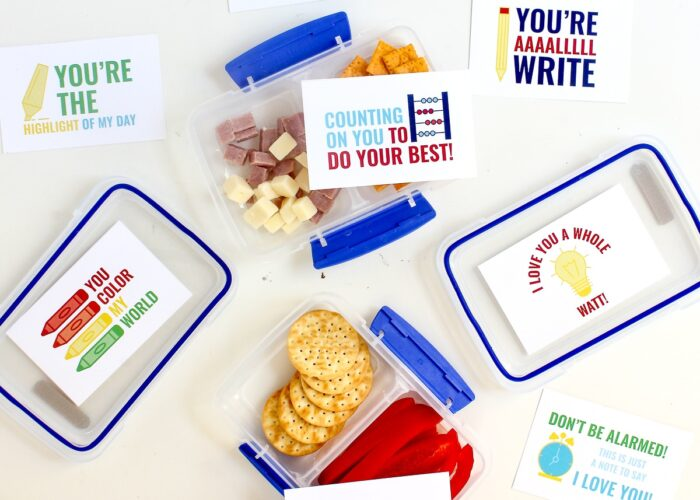 Sistema lunch containers loaded with snacks and lunch box notes.
