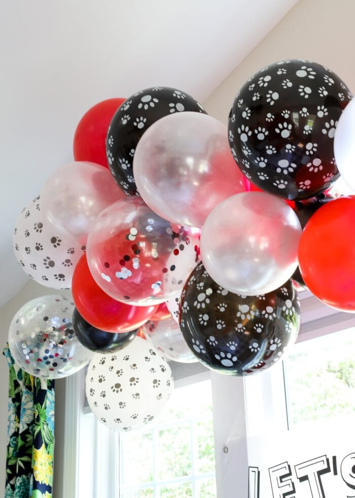 Red, black, and white balloons with paws on them.