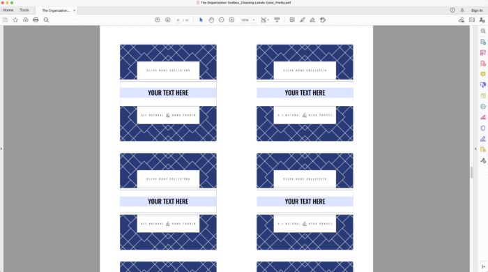 Screenshot of Editable Printable Cleaning Labels